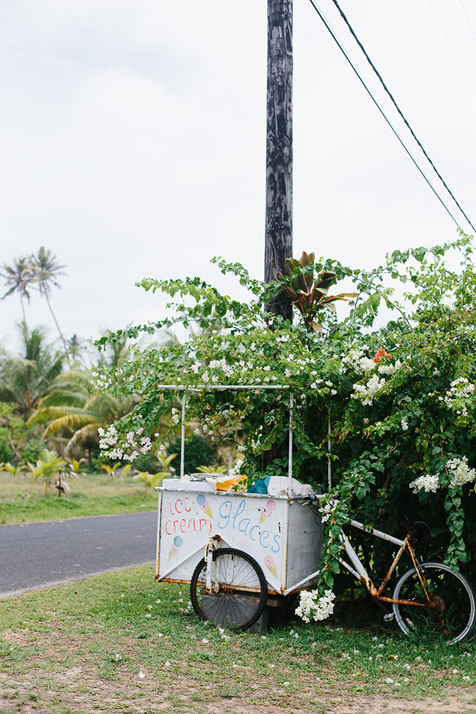 An ice cream cart on the back of a bike