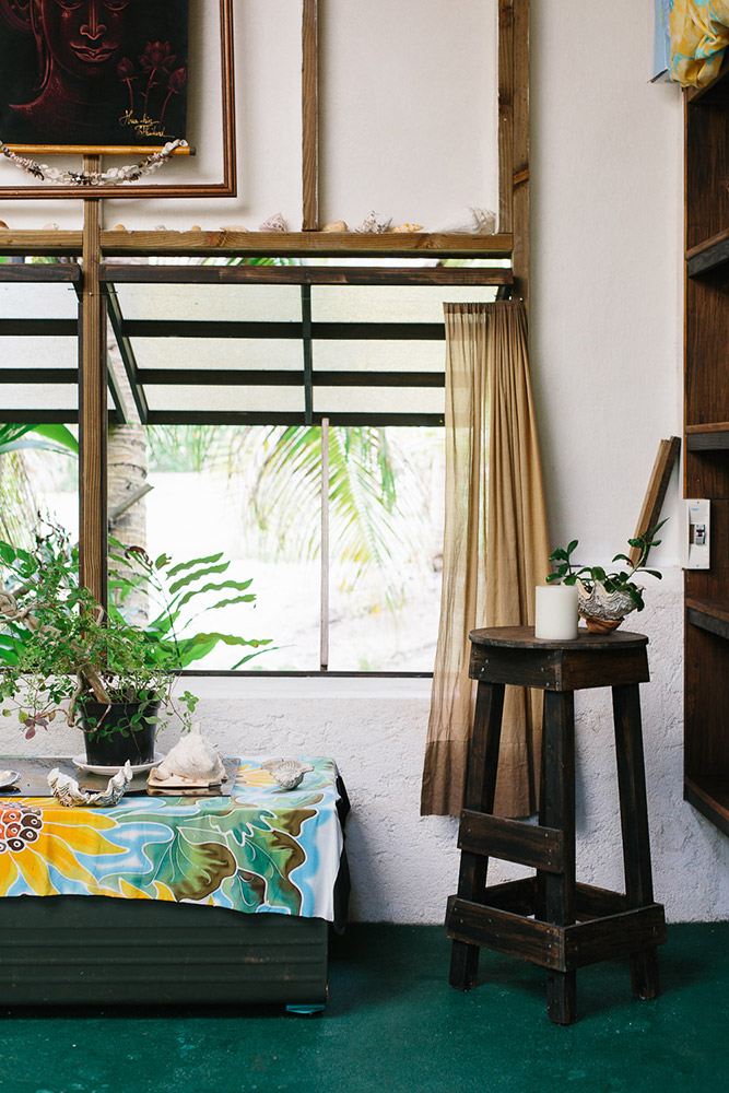Interior inspired by island life with plants and shells