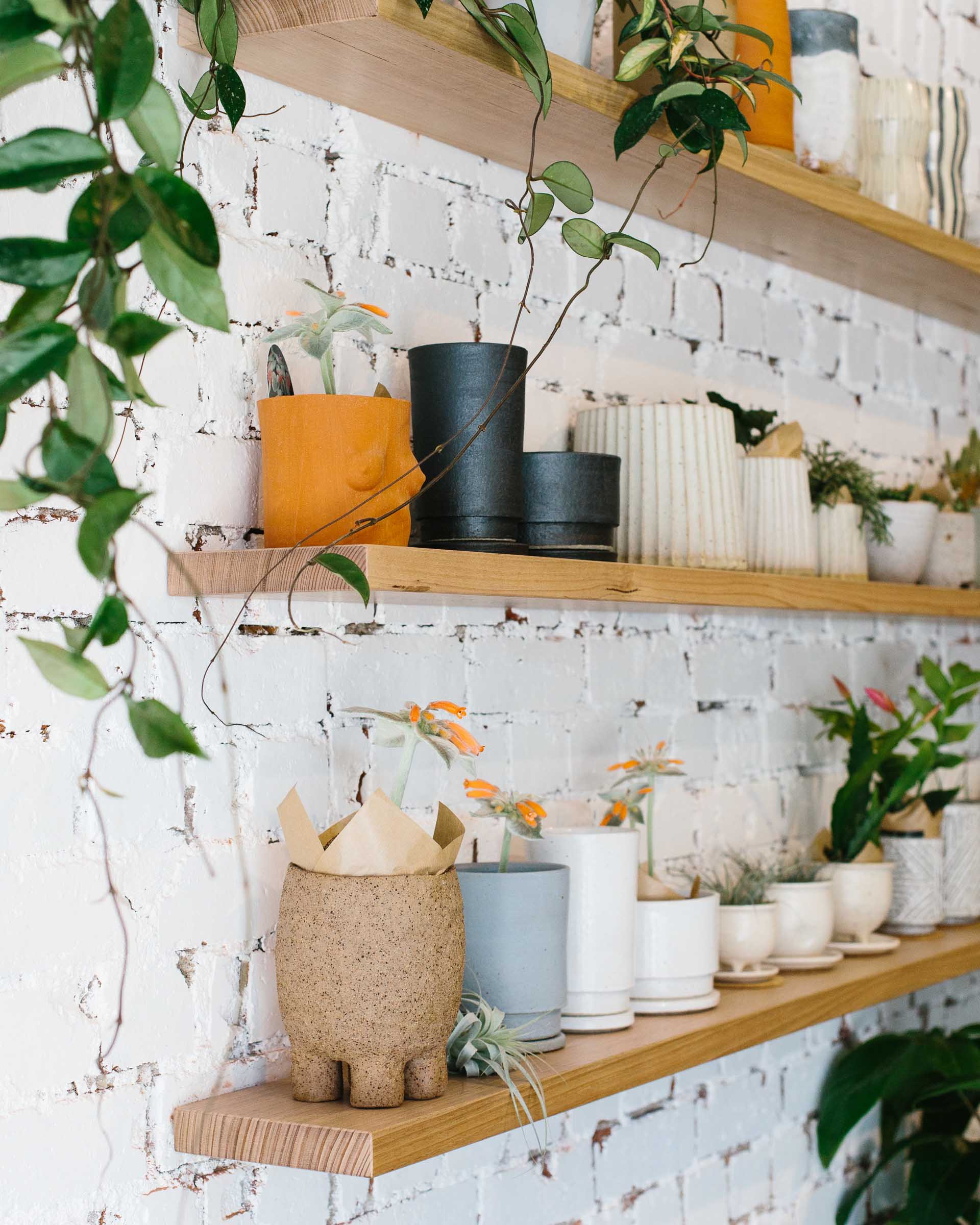 Australian made ceramic planters in all shapes and sizes