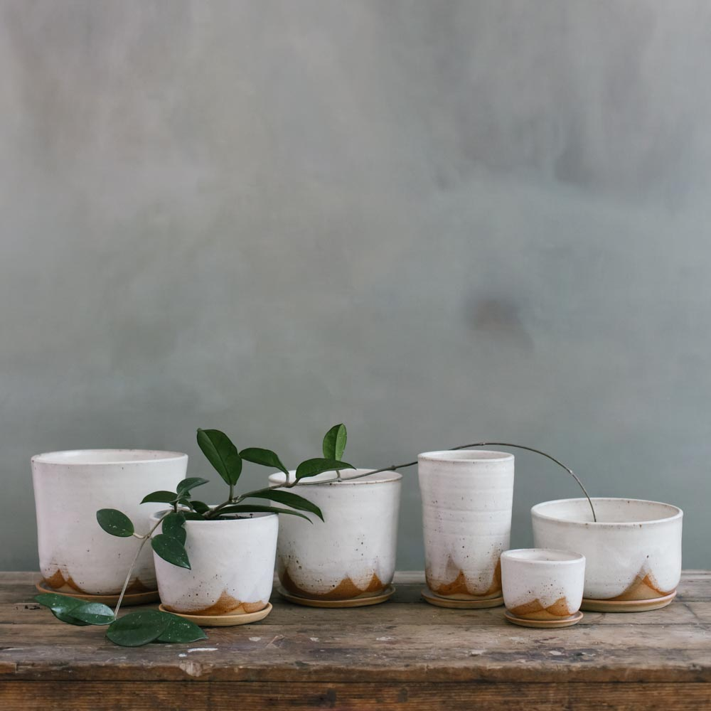 Leaf and Thread Glacier Planters in six different shapes and sizes